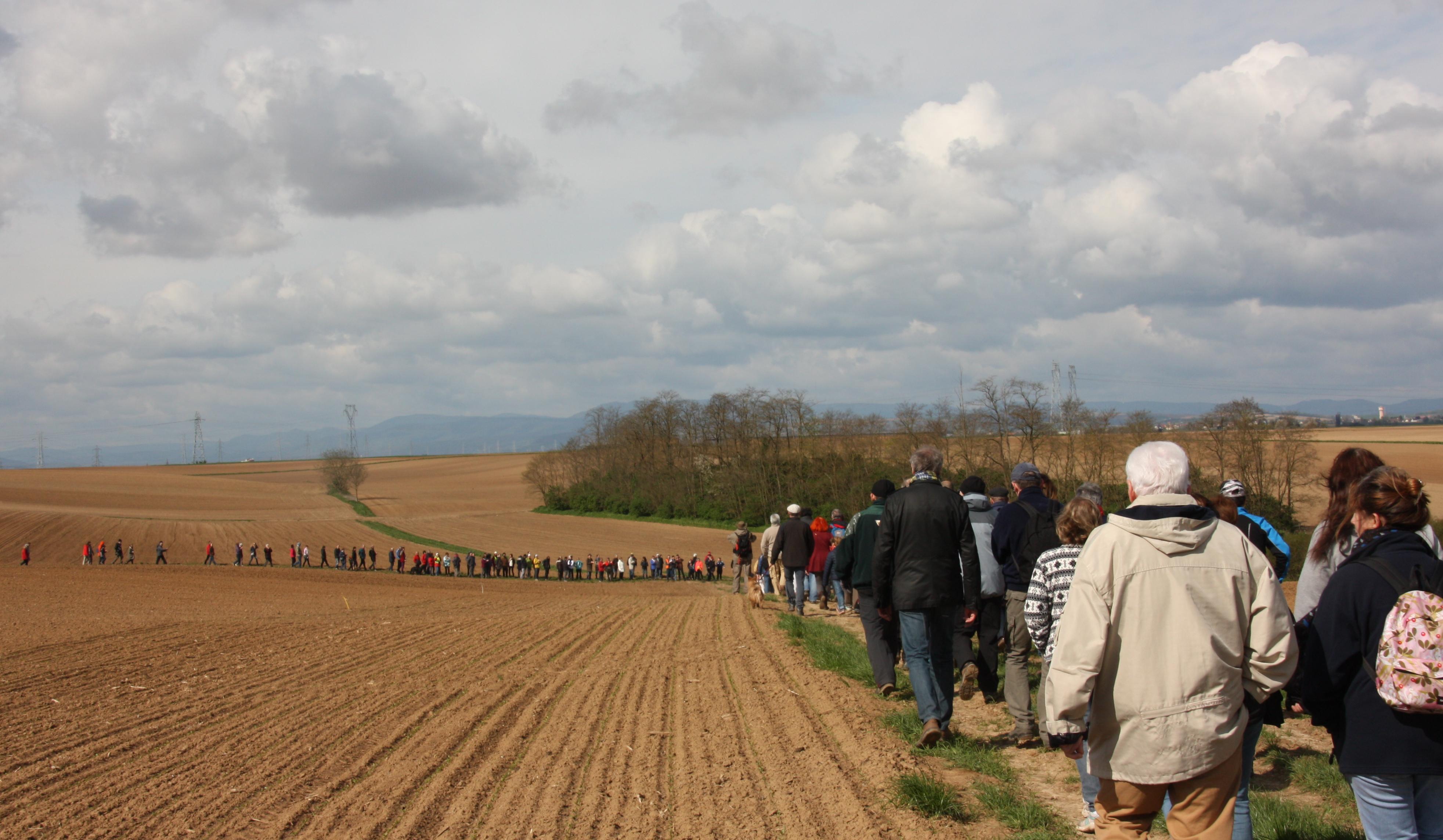 Le moment où les marcheurs de Vendenheim rencontrent ceux de Pfettisheim.