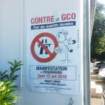 GCO-WE (11)