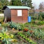 jardin familiaux