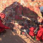kistur et saduram devant ki pad-cigale et les fourmis