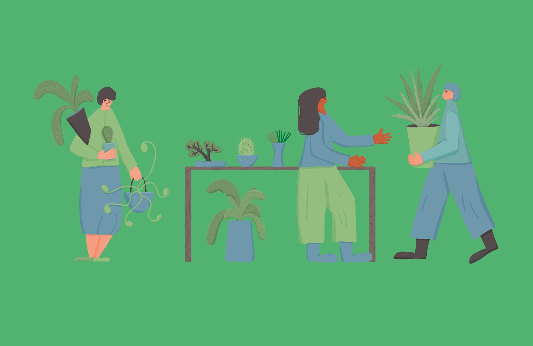 trroctenplante